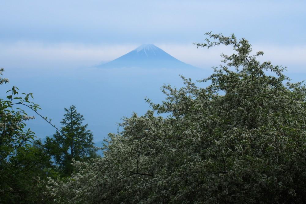 富士山の上と下がかすんでて、山頂だけのぞいている。幻想的できれい。